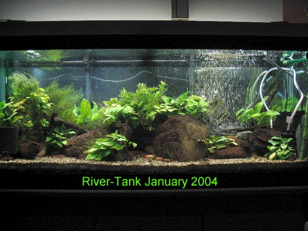 River-Tank - In 2004