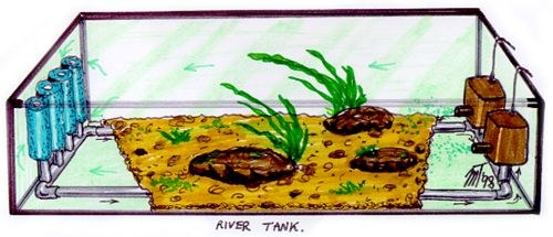 Original River-Tank concept drawing -1998