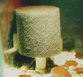 River-Tank Intake Sponge