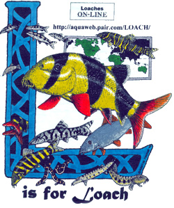 The Loach Almanac - L is for Loach