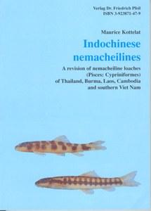 Indochinese Nemacheilines