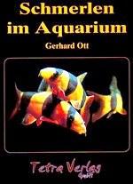 Schmerlen im Aquarium.