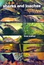 Sharks And Loaches