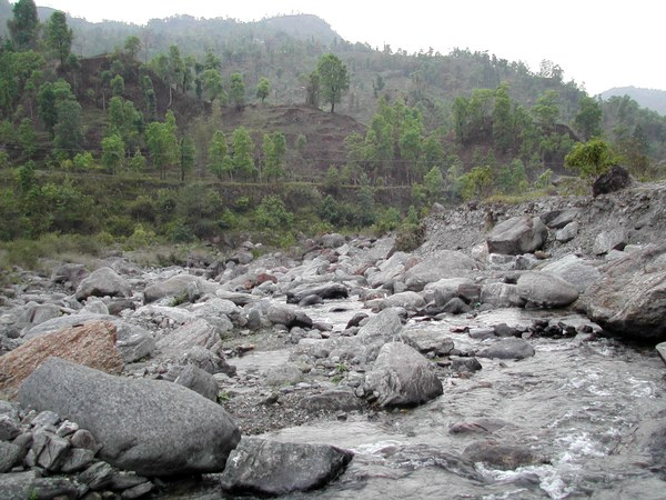 Aborichthys elongatus - Natural habitat